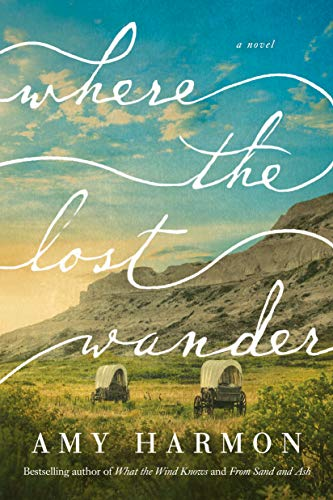 Where the Lost Wander Book Cover