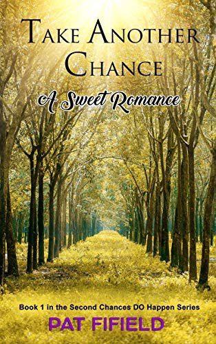 Take Another Chance Book Cover