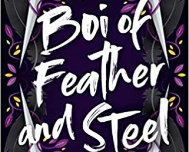 Book Cover - The Boi of Feather and Steel